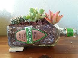 Succulent Planters For Sale by Sale Hornitos Tequila Bottle Planter Succulent Herb Or