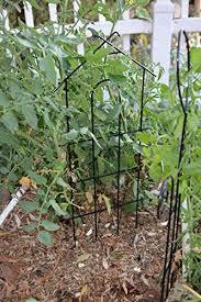 amazon com garden climber shelf metal flower rack trellis