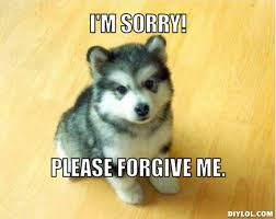I Am Sorry Meme - image resized baby courage wolf meme generator i m sorry please