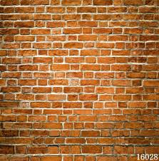 seal photography backdrops studio children baby red brick wall