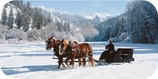 Price Of Rides At Winter Sleigh Jpg
