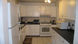 cabinet lowes kitchen cabinets design intrigue lowes kitchen