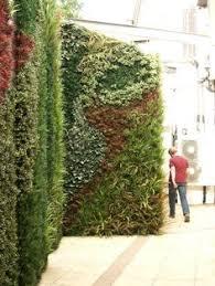 vertical wall garden livedivider suite plants commercial