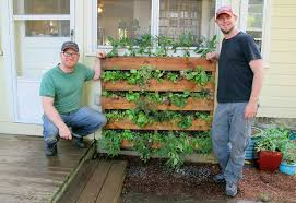 Diy Vertical Pallet Garden - how to build a vertical vegetable garden how to design the perfect
