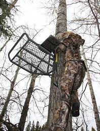 tree stand safety tips big hunt