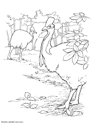 rain forest coloring pages k 3 coloring sevierville tennessee
