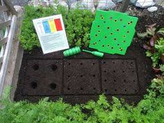 Square Foot Garden Layout Ideas Beginner S Vegetable Garden Salad Garden Herb Garden Tomato