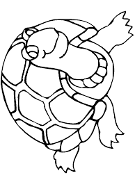 free baby turtle coloring pages print download free printable