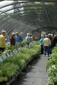 Botanical Garden Chapel Hill by 38 Best Gardening U0026 Gardens In North Carolina Images On Pinterest