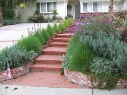 low water landscaping ideas design ideas u0026 decors