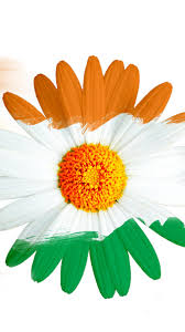 Indian Flag Gif Free Download India Flag For Mobile Phone Wallpaper 15 Of 17 U2013 Tricolour Flower