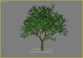 exlevel tutorials how to create a simple tree