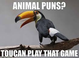Animal Pun Meme - see more here https www sunfrog com pets crazy bird lady 4 9471