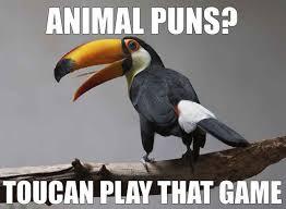 Animal Pun Meme - pin by rebekah martin fong on humor pinterest animal puns worst