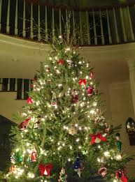delightful tips on decorating a christmas tree for elegant