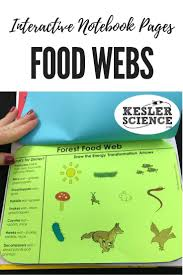 261 best interactive science notebook images on pinterest
