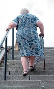 stair negotiation alters stability in older adults lower