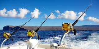 Sport Fishing Flags Los Cabos Luxury Resorts Marquis Los Cabos Resort U0026 Spa