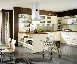 Built In Kitchen Cabinet Fetching White Color Modern Kitchen Cabinets With Built In Oven