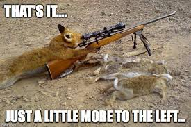 Hunting Meme - fox hunting a little more to the left imgflip