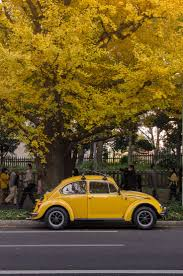 volkswagen yellow car vehicle retro 296 best auto images on pinterest car sports cars and beautiful