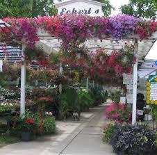 Flower Shop Troy Mi - plant nursery troy mi flower baskets garden supply eckert u0027s