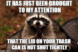 Raccoon Excellent Meme - evil plotting raccoon memes imgflip