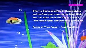 thanksgiving prayer for children short story series for children power of true prayer in english