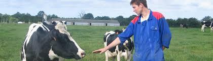 l apprentissage agricole dans les hauts de version longue je suis futur apprenti cfa agricole de l aisne