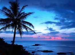mama u0027s hawaiian bbq tucson az order now hawaiian bbq