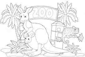 kangaroo zoo with large and chameleon coloring pages for kids grt