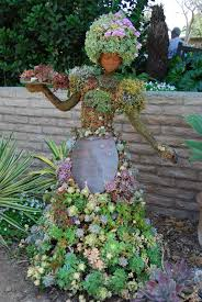 16 fun u0026 quirky ideas for succulents dgf landscapes mackay