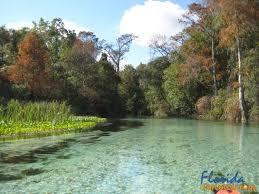 Florida rivers images Florida dep continues restoration of rivers lakes estuaries jpg
