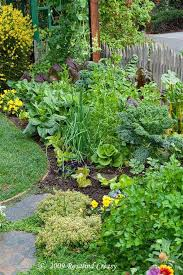 best 20 vegetable garden design ideas for green living edible