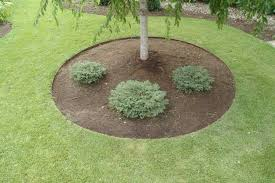 Landscaping Ideas Around Trees Landscape Edging Ideas Around Trees Landscaping Gardening Ideas