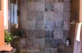 shower shower and bath interesting shower bath u201a captivating