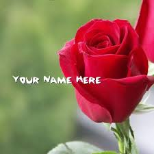 get your name in beautiful style on red rose picture you can