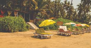 sunway beach cottages ashwem morjim beach goa luxury beach