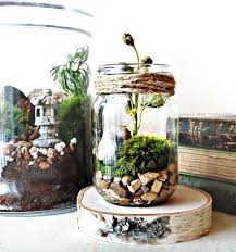20 cutest spring terrariums for a fresh touch shelterness
