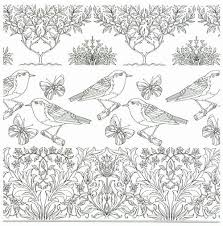 915 birds coloring images coloring books