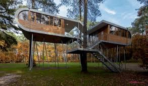 amazing tree houses around the world outdoors