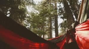 nothing like relaxing in a nothing like relaxing in a hammock gif on imgur