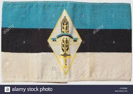 Blue White And Black Flag Armband For An Estonian Flak Helper White Cotton Armband Printed