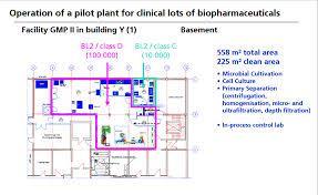 facility layout design jobs gmp in an api pilot plant drug regulatory affairs international