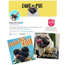 know a birthday that calls for fancy send a new doug the pug