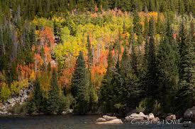 autumn trees lake rocky mountains