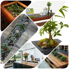 Decorating Home With Plants Destressing Your Home With Indoor Plants Homelane
