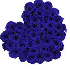 blue roses box white blue eternity roses