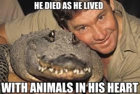 Steve Meme - steve irwin meme laughs pinterest steve irwin meme and memes