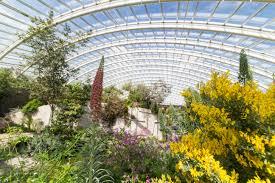 National Botanic Garden Wales Botanical Gardens Website Unique The National Botanic Garden Of